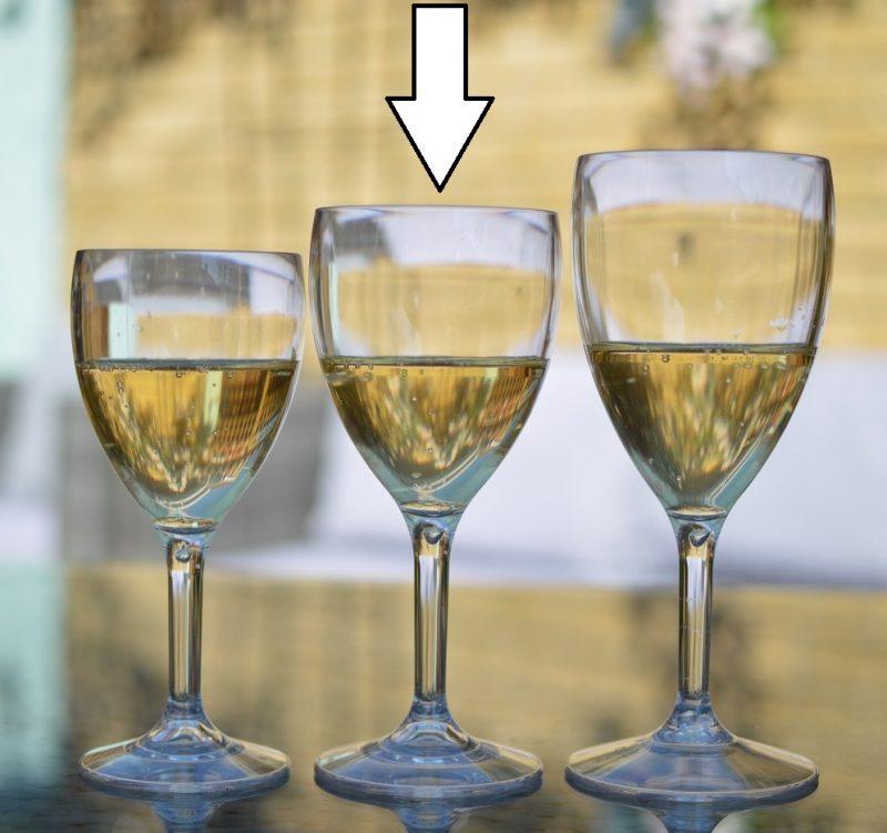 Plastic Wine Glasses 11oz 9oz 14oz