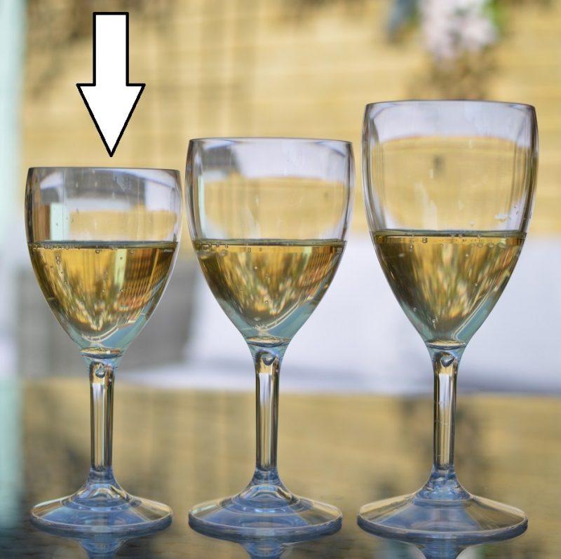 Plastic Wine Glasses 9oz UK