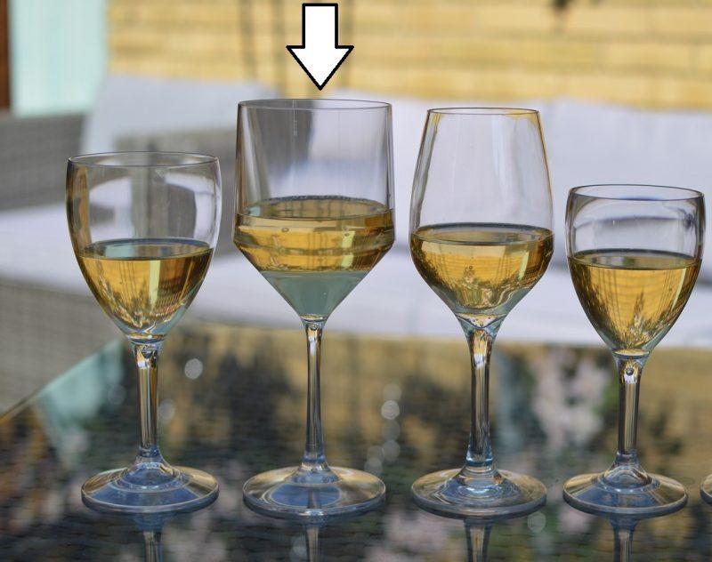 Premium Plastic Wine Glasses